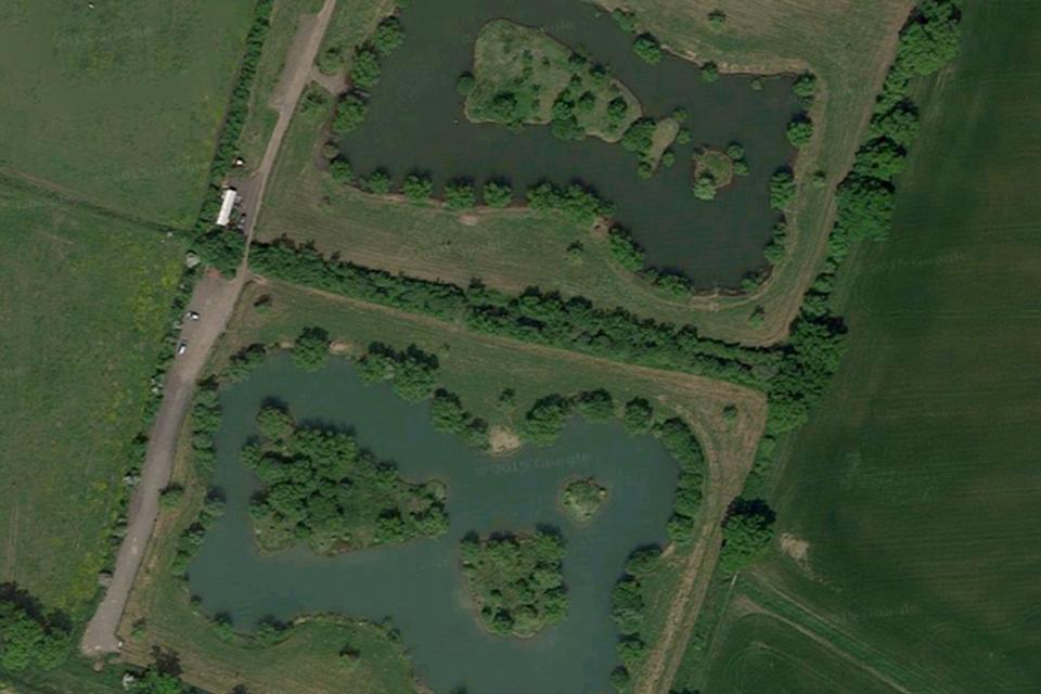 Cat & Carp Lakes